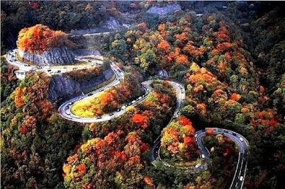 Taiwan road: The Roads, Chattanooga Tennessee, Buckets Lists, Japan, Autumn, Dragon, Switchback Highway, Highway Chattanooga, Chattanooga Tn
