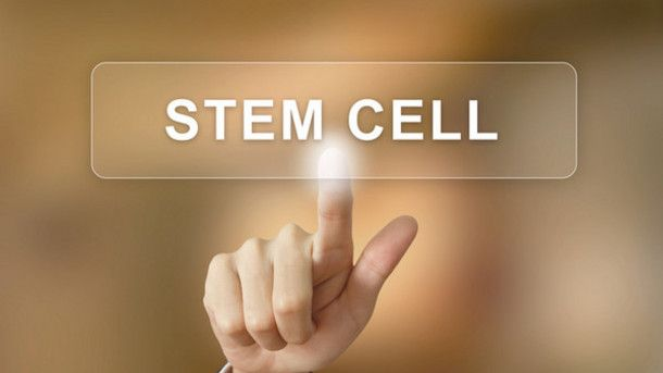 Industry needs new bioreactor and monitoring tech for stem cell scale-up, expert
