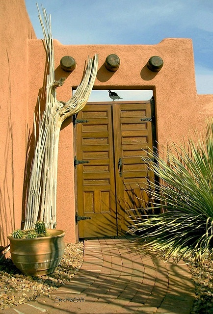 137 best adobe houses images on pinterest southwestern for Adobe construction pueblo co