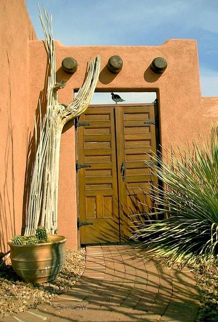 ADOBE HOUSE WITH BROWN DOOR