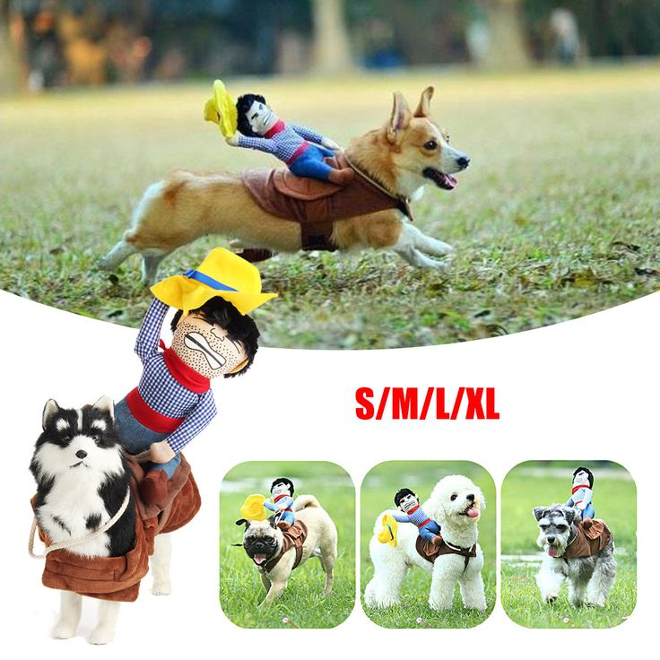 Pet Puppy Dog Riding Horse Cowboy Costumes Clothes Party Dress Cosplay Christmas