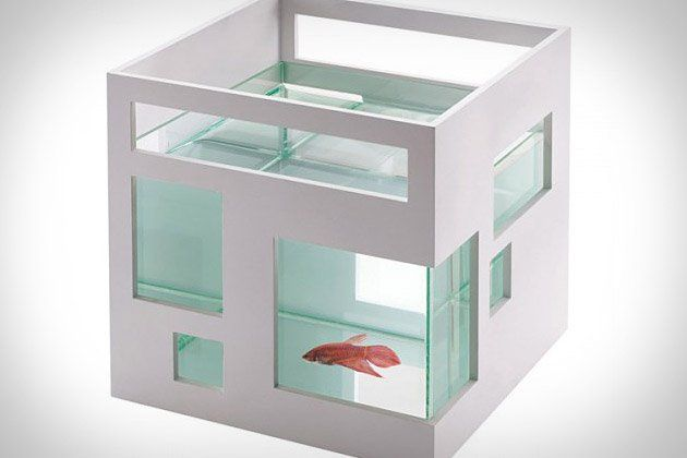 everyone needs a fish hotel!
