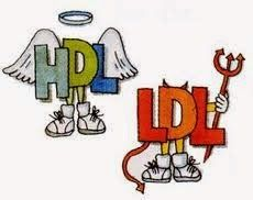 Spotlifes: Πως να κρατησω χαμηλά την LDL χοληστερίνη.