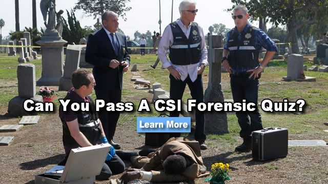 career goals in crime scene investigator It begins with an overview of the goals behind criminal sentencing  i choose  crime scene investigation as my career because when i was a little girl my dream .