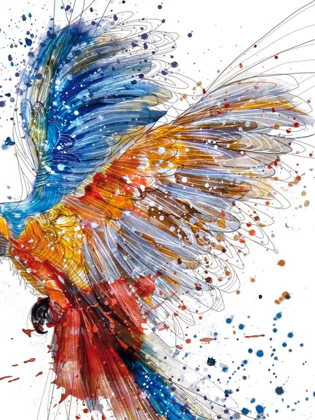 I absolutely love the colors in this piece. The bird has a lot of movement and flow. It looks like the bird is made of paint and the paint is being flung off of the wings. It also has a hand-drawn feel to it. I would have liked it if the designer would have shown the whole bird.