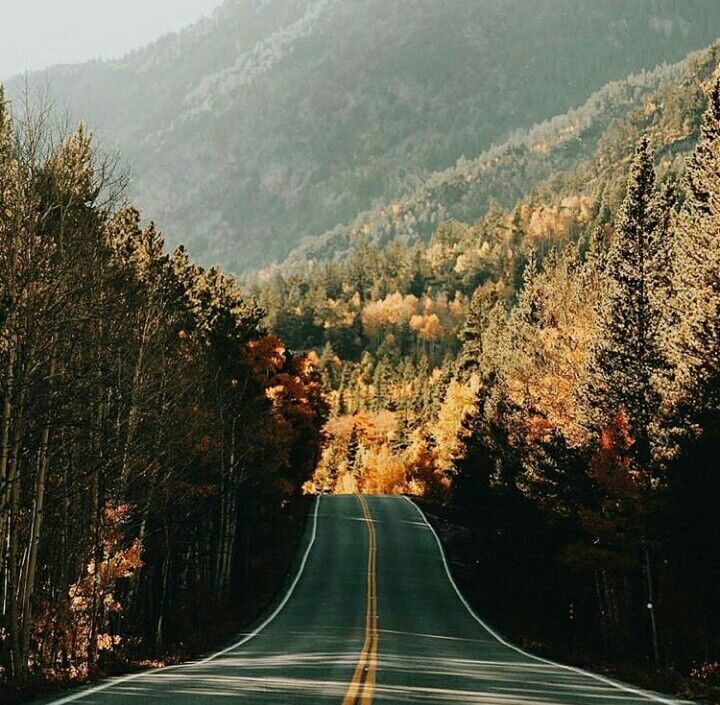 » on the road again » wind in your hair » adventure » road trips » rubber tramp » feet on the dash » crusin' » magic bus » glamping » travel »