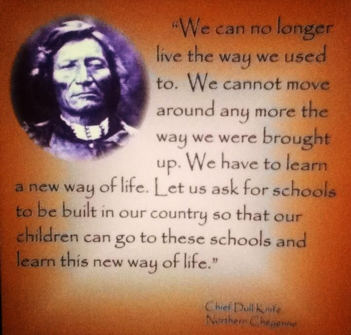 Chief Dull Knife Native American Wisdom Love My Family