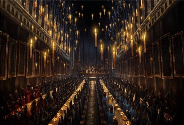 Harry Potter Backdrop Birthday Party 5x7ft Hogwarts Dining Hall Party Banner Harry Potter Halloween Harry Potter Floating Candles Studio Backdrops Backgrounds
