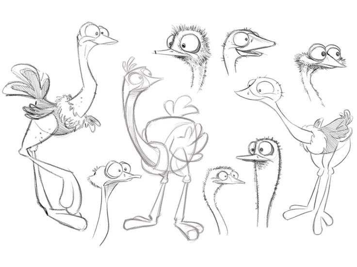 Ostrich Character Designs