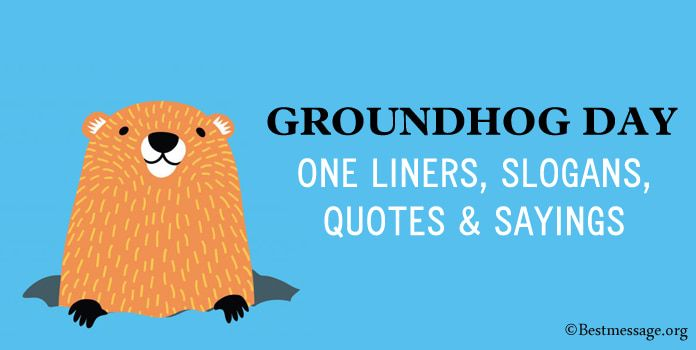 15 Groundhog Day One Liners Slogans Quotes Sayings In 2021 Happy Groundhog Day Groundhog Day One Liner