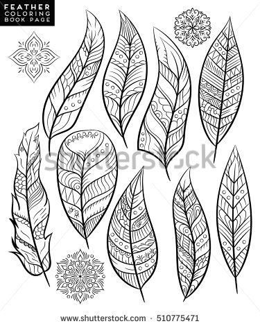 Feather, Vector feather, floral feather, flower feather, oriental feather, coloring feather, feather, outline feather, template feather, christmas feather, indian feather, wedding feather
