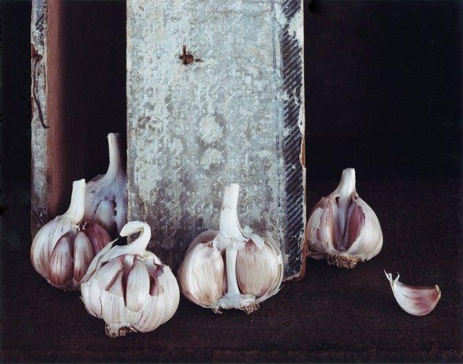 Olivia Parker, Garlic