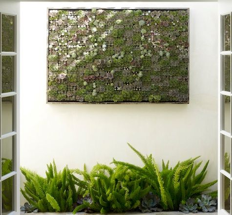 Accessories: Vertical Garden From Flora Grubb In SF