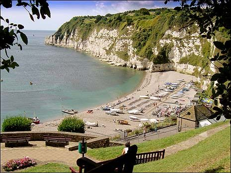 Another view of Beer beach from the cliff side gardens. The South West Coastal path runs along the top of the headland with fantastic views across Seaton Bay. You can walk along the cliff top to Branscombe where there is a cafe by the beach and the Mason's Arms pub in the village inland. Beer Village | South Devon | England