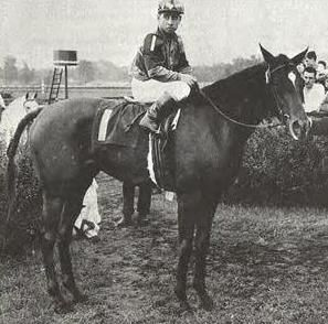 """Busher, a War Admiral daughter, was another champion produced by Idle Hour Farm.  Col. Bradley  was not a fan of War Admiral's """"hot"""" sireline, but he relented due to the stud's resemblance to Sweep and was rewarded -- Champion 2 & 3 yr old Filly and 1945 US Horse of the Year.  She died delivering her 5th foal in 1955, but was inducted to the Hall of Fame in 1964.  Her 1st Jet Pilot colt, Jet Action, sired a Myrtle Charm filly, My Charmer, Seattle Slew's grand-dam."""