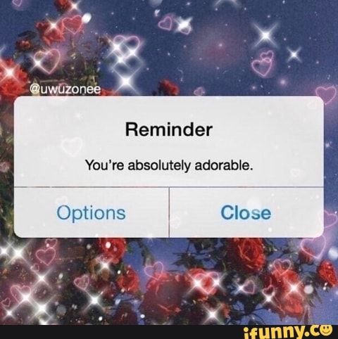 Reminder You're absolutely adorable, - iFunny :) in 2020 ...