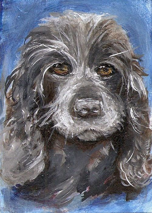 ACEO Dog Pet Portrait Mixed Media Acrylic Painterly Style Art Penny Lee StewArt #Realism