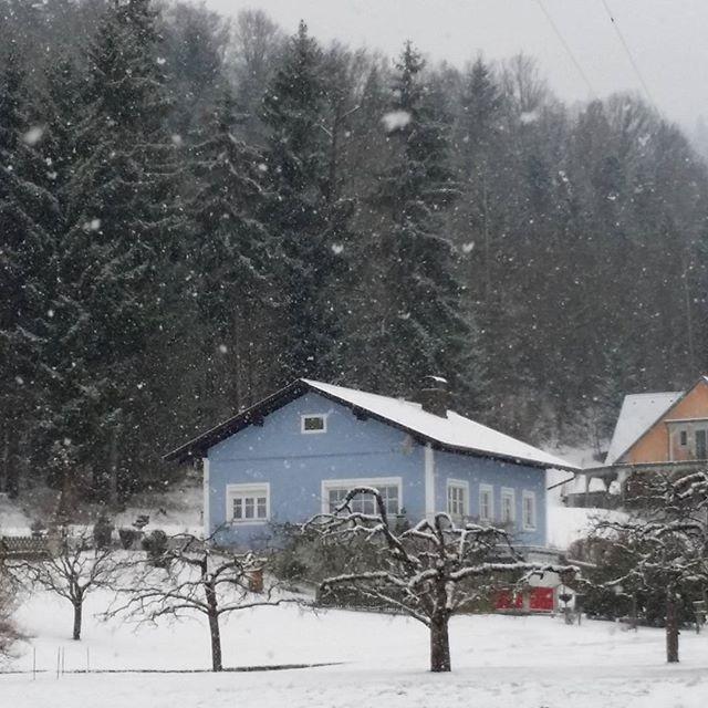 #austria #igersaustria #igers #communityfirst | Wunderland