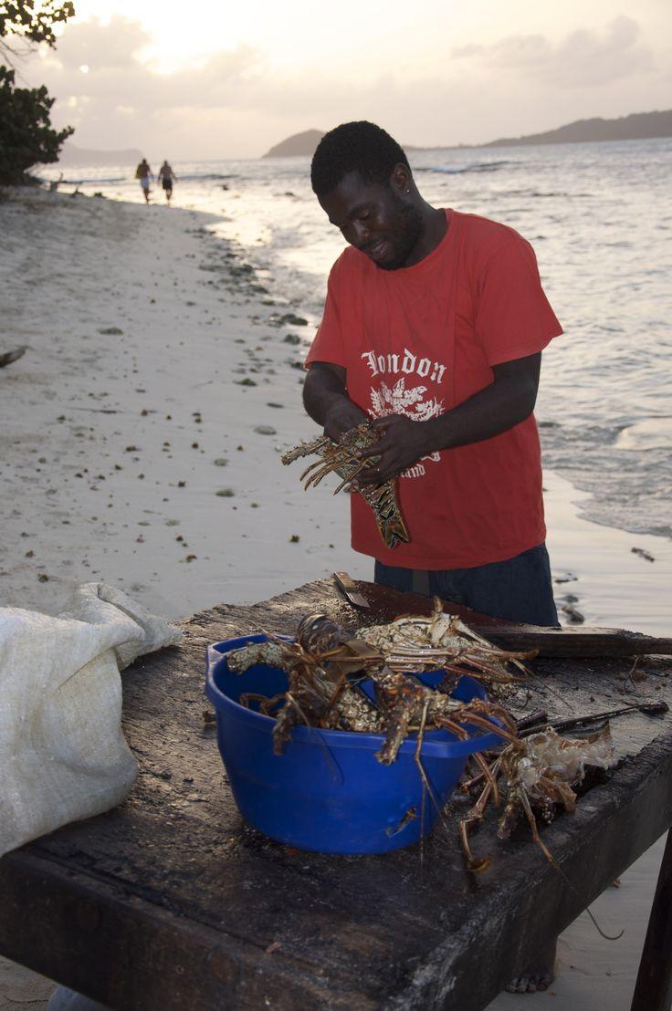 Fresh lobster, Grenadines