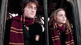 """""""He looked helplessly at Hermione, whose face was stricken. """"Harry,"""" she said timidly, """"Don't you see? This… This is exactly why we need you … We need to know what it's r-really like… Facing him …..."""