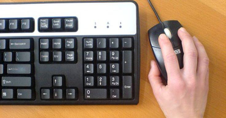 Tipos de puertos y de dispositivos de entrada. Las computadoras pueden hacer uso de diversos dispositivos de entrada. Estos incluyen cosas como escáneres de códigos de barras, lectores de huellas digitales, escáneres de documentos y fotos, palancas de control, teclados MIDI (para tocar música) y otros elementos incluso más esotéricos usados en aplicaciones computacionales altamente ...