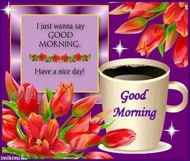 27 best tuesday greetings images on pinterest happy tuesday quotes good morning m4hsunfo