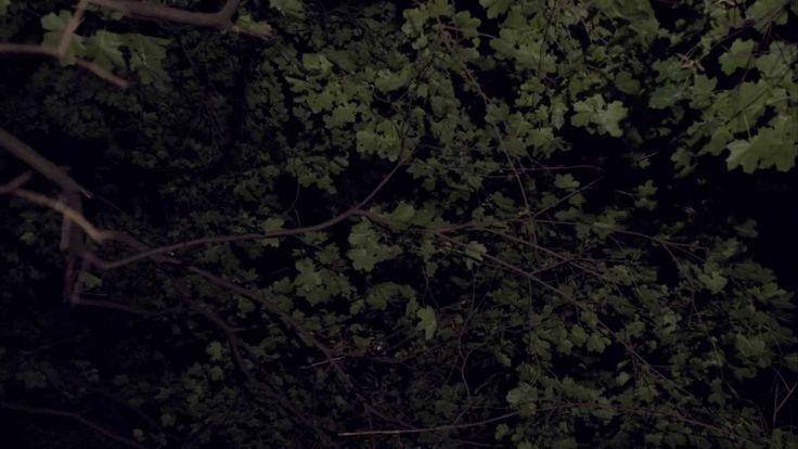 Lucrecia Dalt - Inframince [official video] . Directed by Alejandro Bernal and Luis Delgado.
