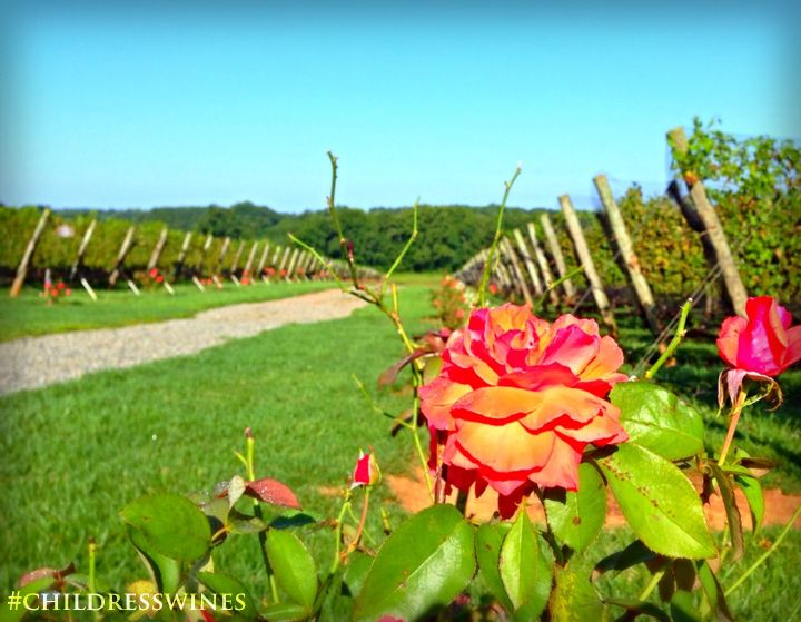 Oh what a beautiful morning! Oh what a beautiful day! #childresswines @Debby Halpern
