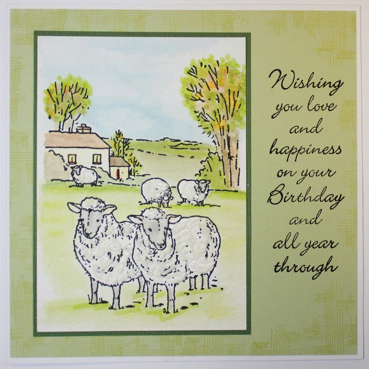 """This Gorgeous handmade card was made by Jenny Mayes using """"Sheep in the Meadow"""" Foam Mounted Stamp as seen on Create & Craft on Monday 21st October 3pm & 6pm"""