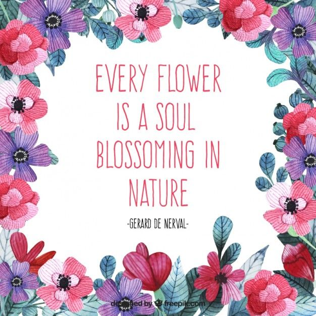 Quotes About Bouquets Of Flowers: 75 Best Inspirational Quotes Images On Pinterest