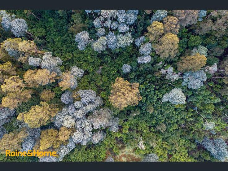 95 Palmers Road Oyster Cove Tas 7150 - Residential Land for Sale #201825278 - realestate.com.au