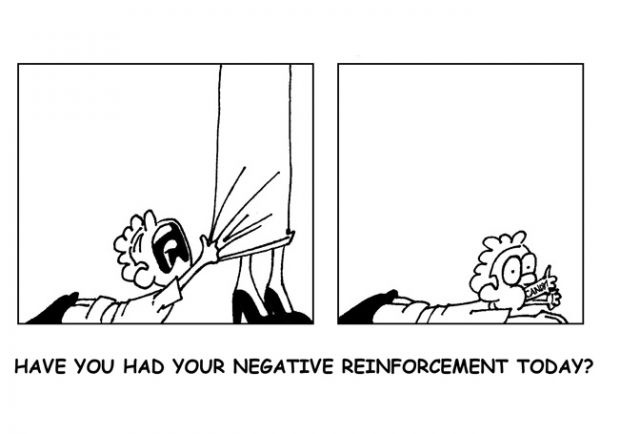Good example of negative reinforcement. Yes, it happens this way some times. Be sure to reward a positive replacement behavior instead.
