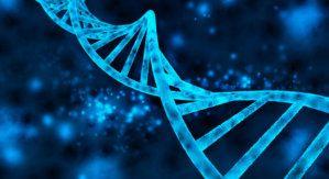 BrandPost: An Intro to Genetic Algorithms