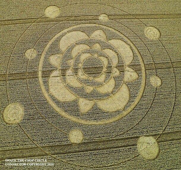 Crop Circle, fue reportado el 29 de julio de 2015 en Furzefield Shaw, Merstham, Surrey, Reino Unido.