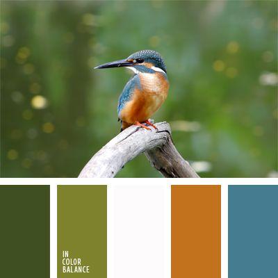 azul claro fuerte, color miel, color verde hierba, colores de una ave tropical, combinación de colores, elección del color, marrón y azul claro, rojizo y celeste, tonos verdes, verde claro, verde oscuro.