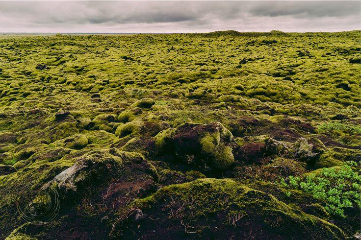 Simone Della Fornace Photography - Blog - Eldhraun Moss Lava Fields