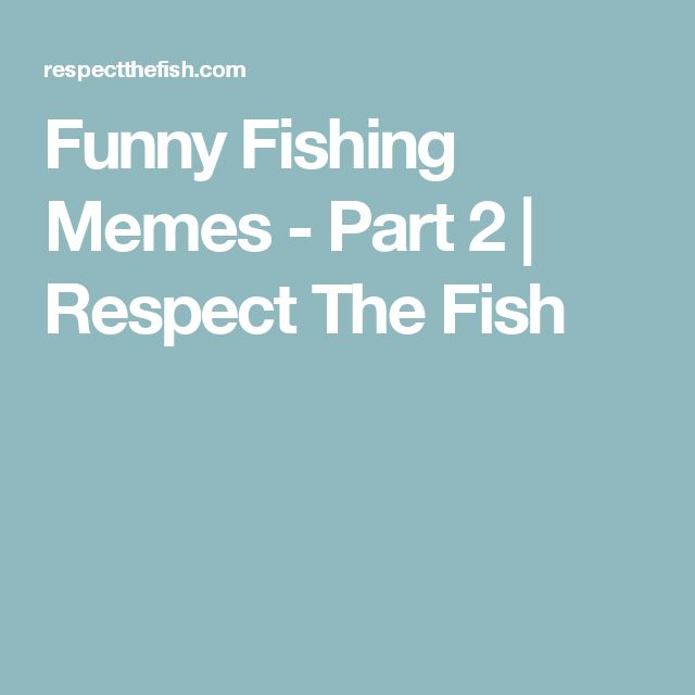 The 25 best funny fishing memes ideas on pinterest for Funny fish sayings