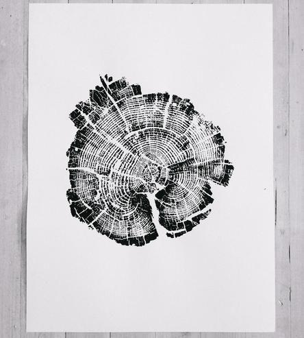 Yellowstone national treepark print /