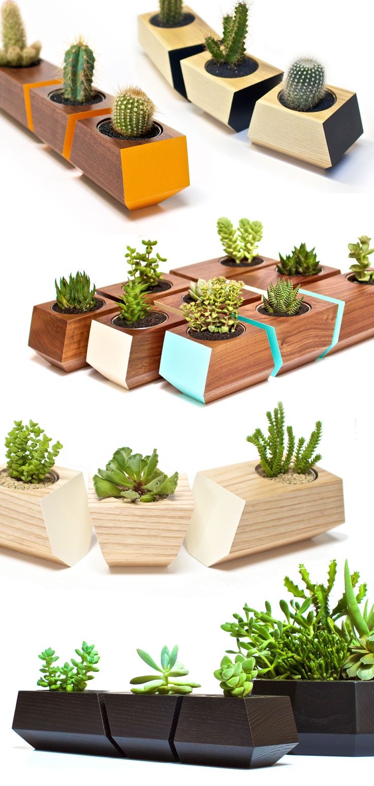 Hard, geometric lines contrasting against the natural grain of solid wood, the modern tabletop planters by Revolution Design House are truly unique pi…