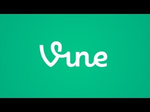 #50 Mind Blowing Facts About Twitter Vine  ReelnReel