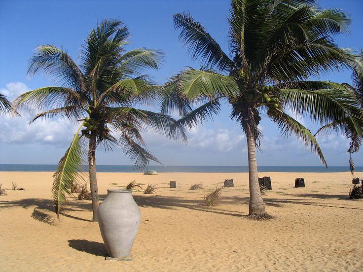 Negombo_Beach,_Sri_Lanka.jpg