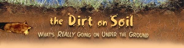 """The Discovery School site """"Dirt on Soil: What's Really Going On Under the Ground"""" provides information about the layers of soil, what lives in the soil, and much more. Includes resources and teacher information."""