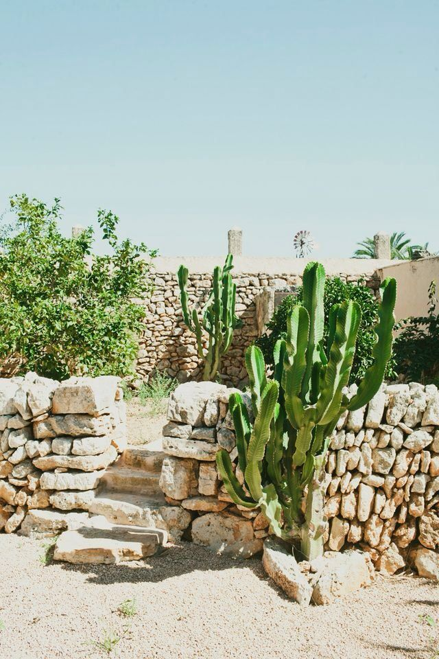 We love Puglia and the cacti everywhere. #boholover amberlair.com