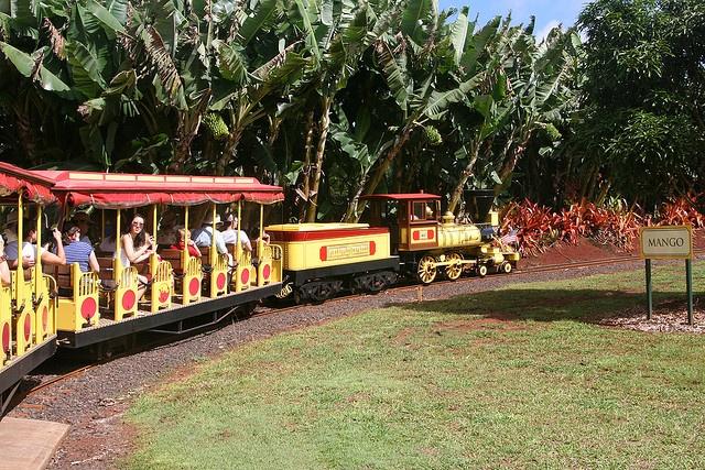 Dole Plantation train   Trains that I built   Pinterest