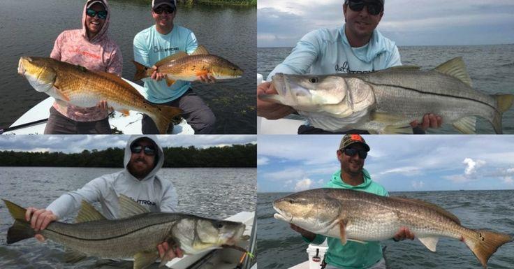 How to catch big redfish snook fishing qa video