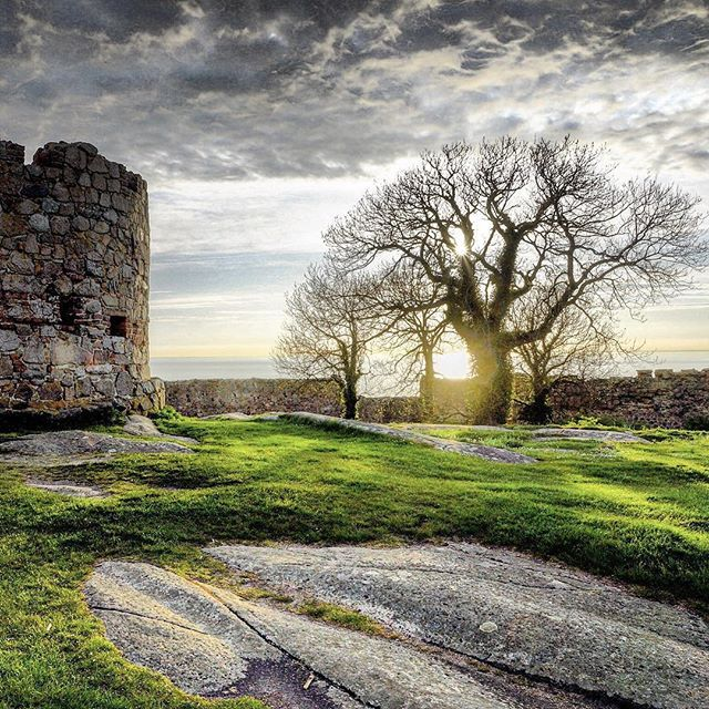 Sunset in winter at Hammershus Castle, Bornholm. #hammershus #bornholm #castle #ruin #denmark #denmark #dänemark