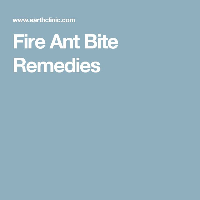 Fire Ant Bite Remedies