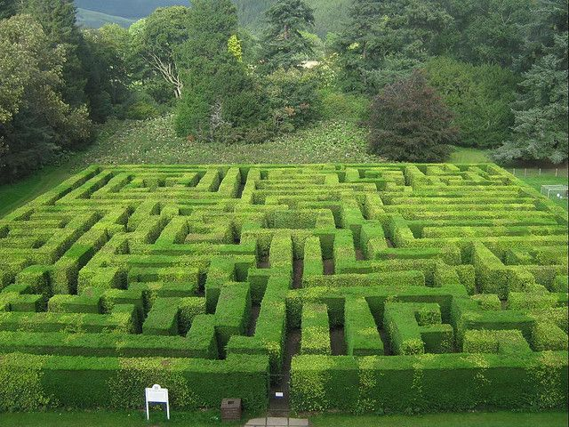 Traquair House Maze was planted in 1981 and is one of the largest hedged mazes in Scotland covering over half an acre and it is 1/4mile to reach the centre. Designed by a Traquair craft worker, John Schofield, the maze has an intriguing layout with no dead ends and the visitor must reach four sub centres before coming to the centre.    http://upload.wikimedia.org/wikipedia/commons/7/78/Traquair_House_Maze.jpg