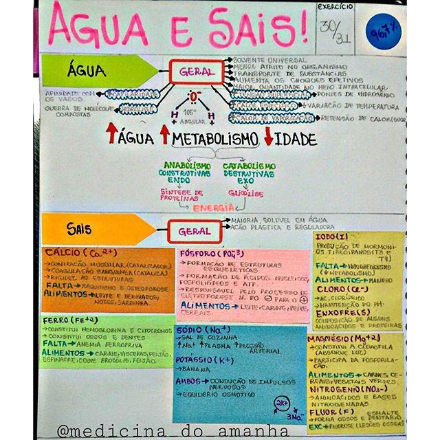 #RESUMO #BIOLOGIA #ÁGUA #SAIS ❤ Também já está disponível para download no blog (RESUMOS 2016 - ...
