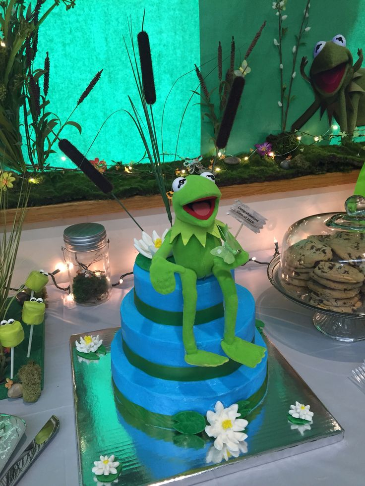 58 Best Leap Year Birthday Cakes Images On Pinterest